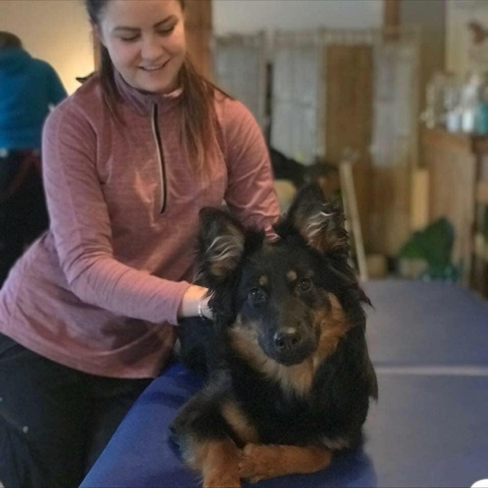 Djurvårdare / Hundfysioterapeut My Jönsson
